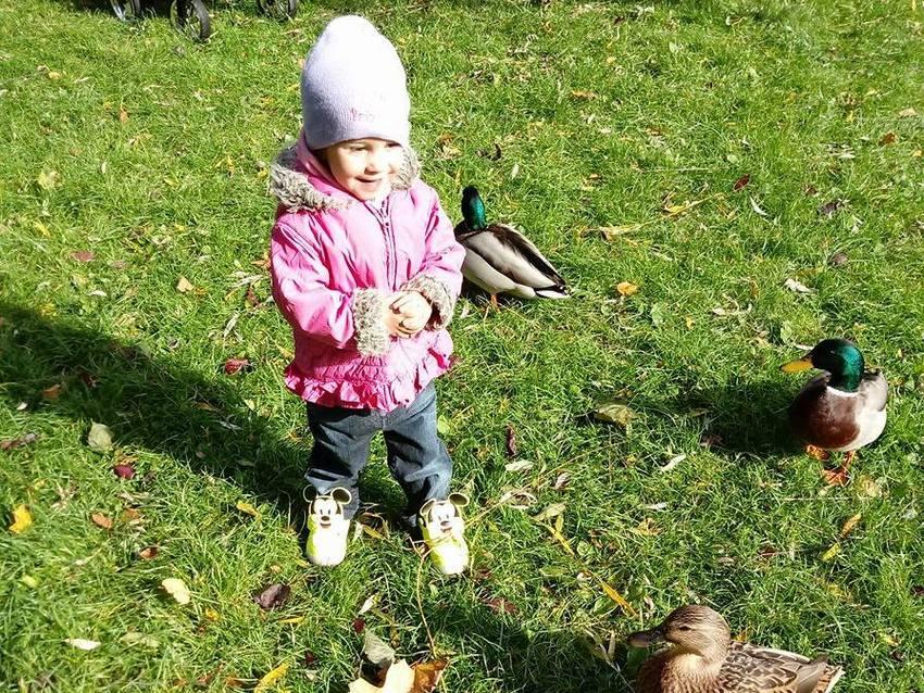 Pomóżmy małej Nikoli z Kielc