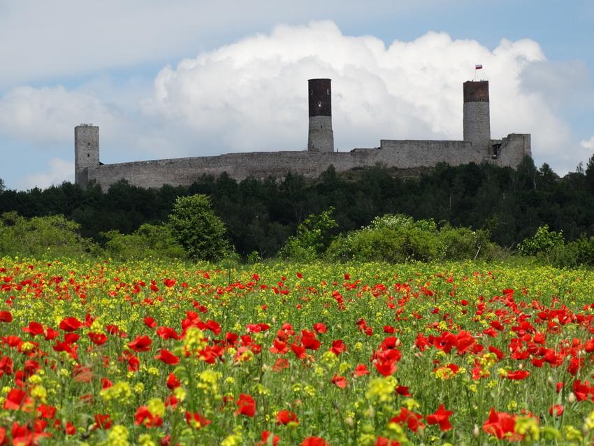 Zagłosuj na Zamek Królewski w Chęcinach