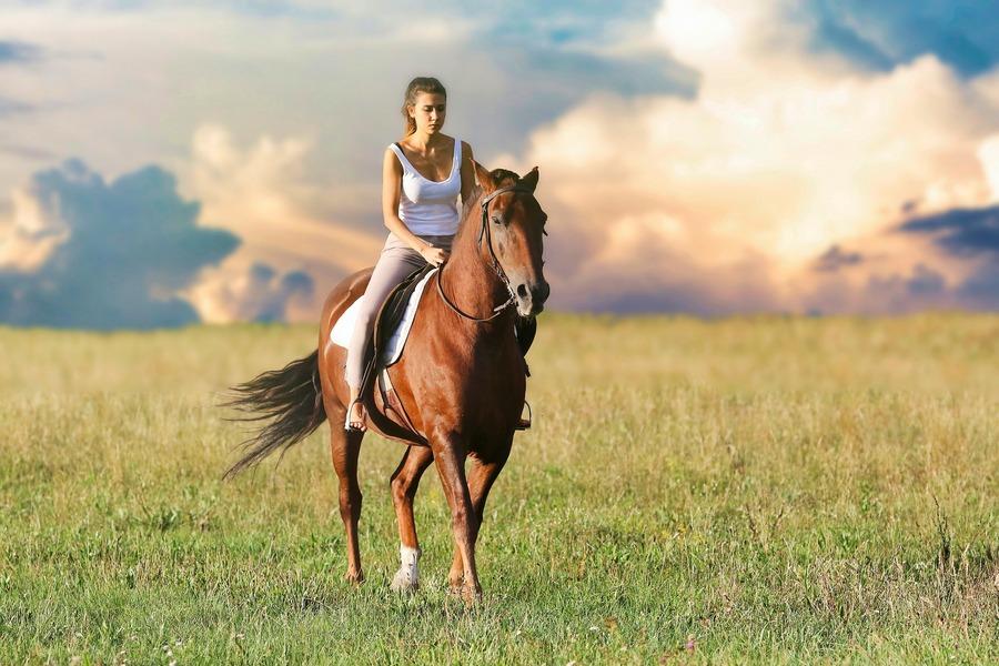 Nim wsiądziesz na konia. Cenne wskazówki dla początkujących