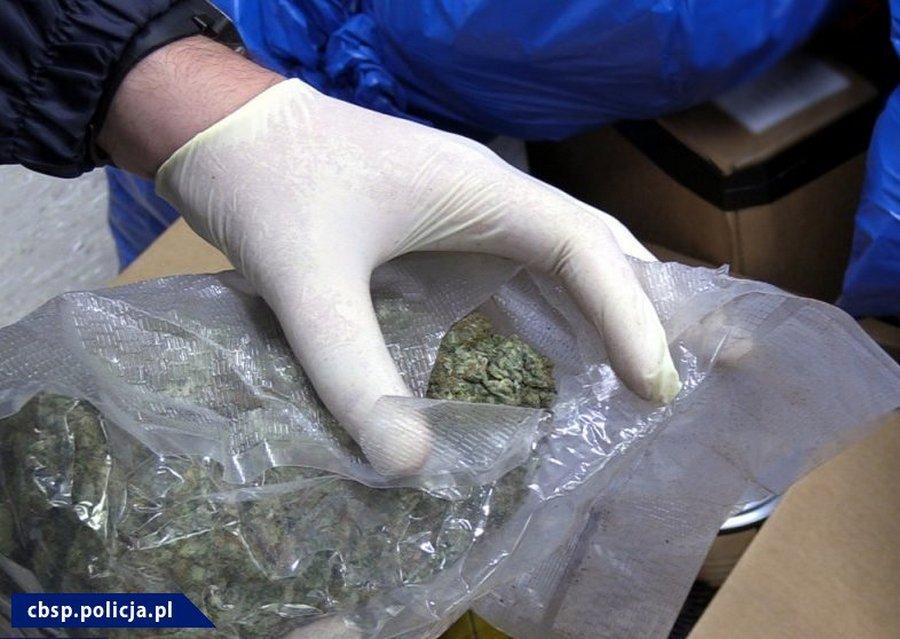 Funkcjonariusze CBŚP przejęli 70 kg marihuany
