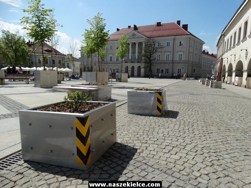 Donice zwalniające na Rynku w Kielcach 16.05.2017