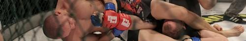 kielce sport Amatorska Liga MMA w Galerii Korona