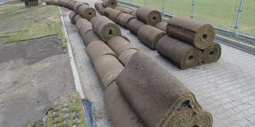 kielce wiadomości Na stadionie Korony układają węgierski dywan (ZDJĘCIA)