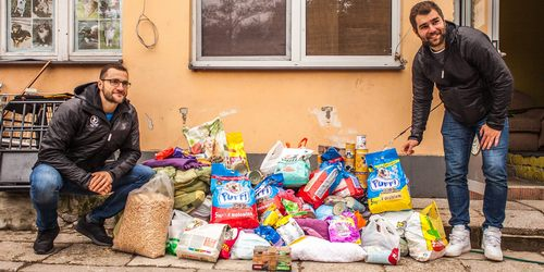 kielce wiadomości Żółto-biało-niebieska pomoc dla Schroniska w Dyminach