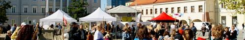 kielce wiadomości Rusza Kielecki Festiwal Nauki