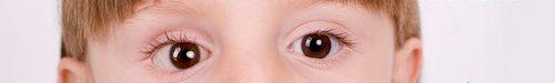 kielce wiadomości Spójrz dziecku w oczy