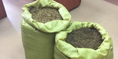 kielce wiadomości Kielczanin przewoził 29 kilogramów nielegalnego tytoniu