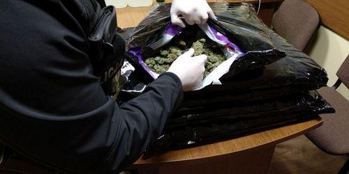 kielce wiadomości 36 kg narkotyków warte 2 mln zł zdjęte z czarnego rynku