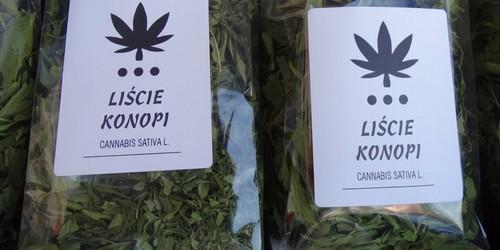 kielce wiadomości Stowarzyszenie festynem promowało marihuanę (ZDJĘCIA)