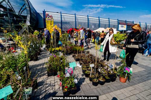 kielce wiadomości OGRÓD i TY- największy kiermasz ogrodniczy w regionie już w sobotę 16 maja