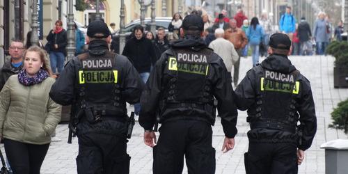 kielce wiadomości Syn kopał policjantów podczas zatrzymywania ojca. Obaj trafili do celi