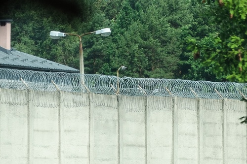 kielce wiadomości Osiem osób zatrzymanych w związku ze śmiertelnym pobiciem przy areszcie