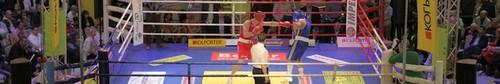 kielce sport Gala boksu Walka Gigantów w Galerii Korona - zdjęcia,video