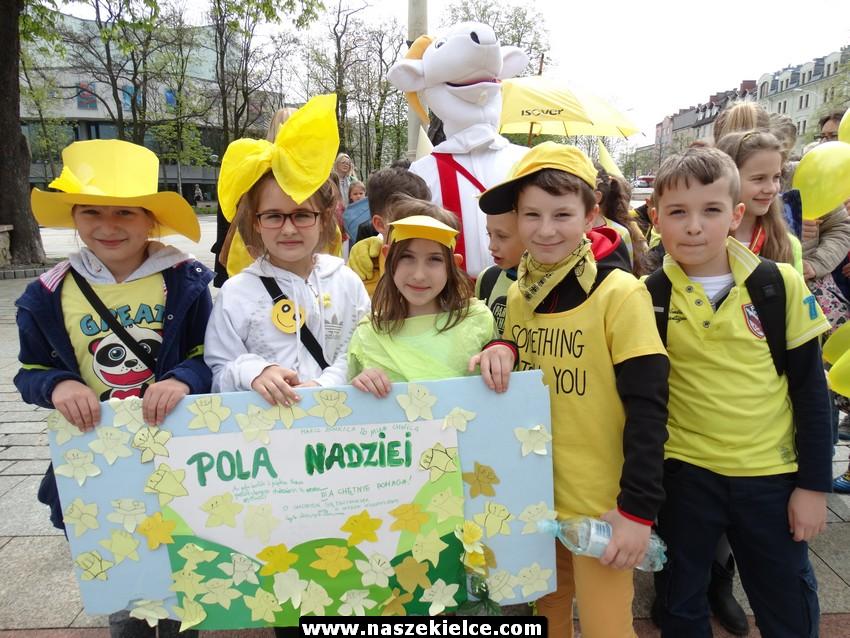 Marsz Żonkili w Kielcach 05.05.2017