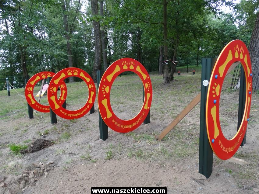 Plac zabaw dla psów w Kielcach