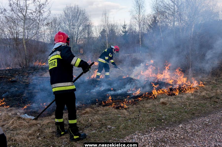 Pożar traw 20.03.2019