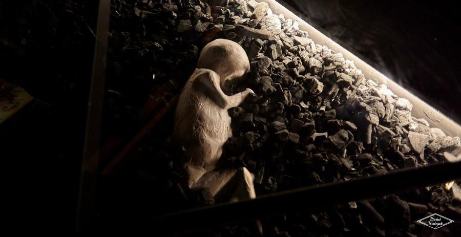 Wernisaż wystawy Strach w Muzeum Narodowym w Kielcach 26.11.2019
