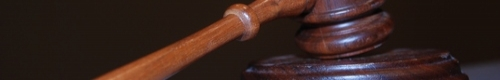 kielce wiadomosci Znany kabareciarz hodował marihuanę. Sąd odroczył rozprawę ze