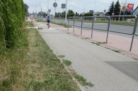kielce wiadomości Będą nowe ścieżki rowerowe?