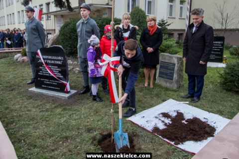 kielce wiadomości Zasadzili drzewko, by uczcić niepodległość (ZDJĘCIA,WIDEO)