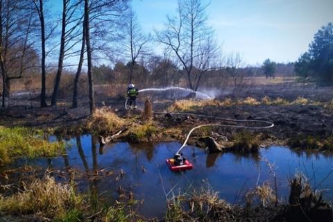 kielce wiadomości Stop pożarom traw! Służby apelują o rozsądek
